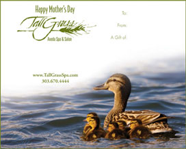 Treat your Mom or wife to a rejuvenating visit to TallGrass Aveda Spa and Salon with a TallGrass Spa gift certificate.