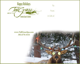 An instantly printable gift certificate is a perfect holiday or Christmas gift.